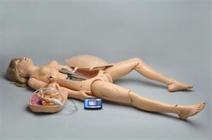 Birthing Simulator with Birthing Baby
