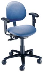 Ergonomic Task Chair w/ Adjustable Arms