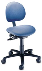 Ergonomic Task Chair with Back
