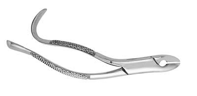 Extracting Forceps 99A