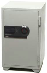 Fire Resistant Commerical Combination Safe