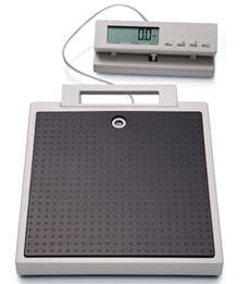Flat Scale w/ Remote Display