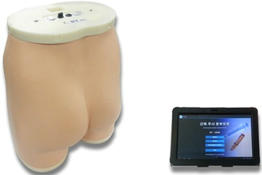Intramuscular Injection Buttocks Simulator Tablet