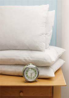 O.R & E.R Medium Weight Pillows 21in x 27in