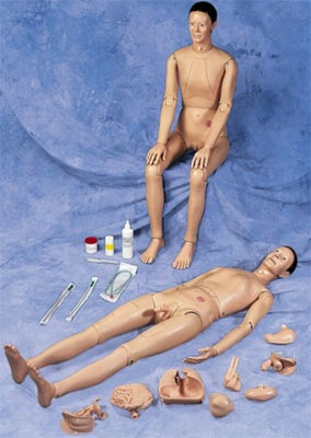 Patient Care Manikin Removable Organs
