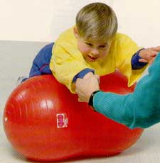 Physio Roll Ball - 70 cm