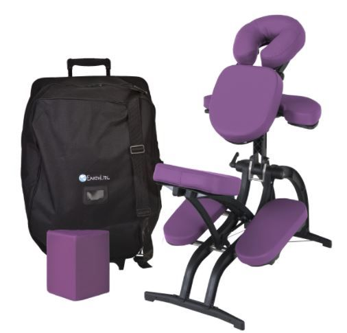 Professional Portable Massage Chair Package