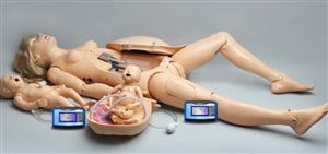 Maternal and Neonatal Birthing Simulator