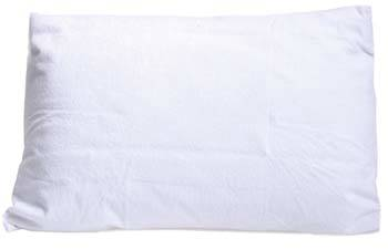 21in x 31in Allergy Control Pillow Cover