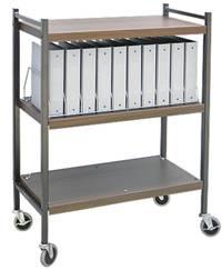 Standard Chart Rack, 10 Binder Capacity