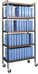 Standard Chart Rack, 40 Binder Capacity