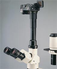 Trinocular Compound Bio Science Microscope