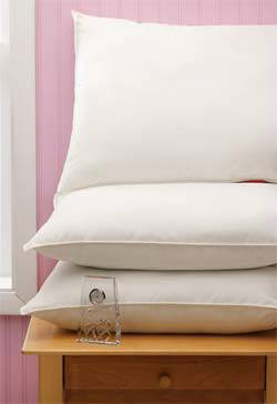 Velvet Soft Washable Pillows 18in x 24in