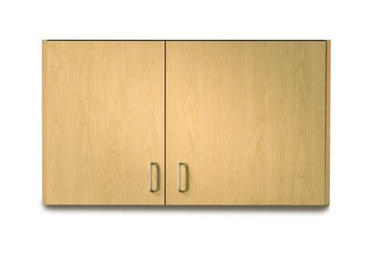 Wall Cabinet with 2 Doors 42in L