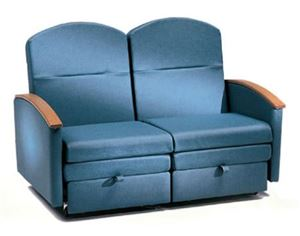 Patient Recliner  Sleeper Loveseat
